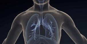 様々な不調の解決につながる呼吸と自律神経の関係